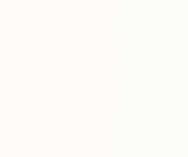 Otvorena pora akrilnim bijelim mat lakom