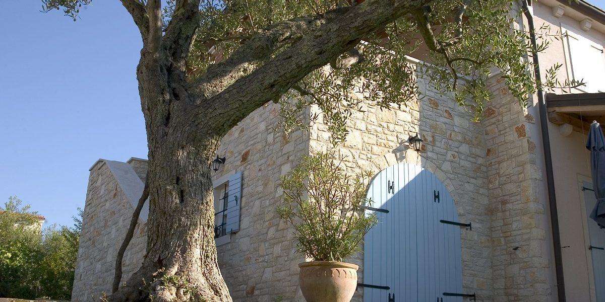 Za vječiti šarm vanjske drvene stolarije…